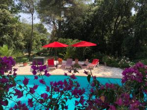 obrázek - Villa La Pastorale