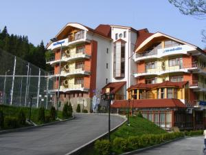 Azuga Ski & Bike Resort - Hotel - Azuga