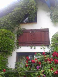 Mazurska Szwajcaria