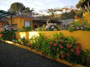 Holiday home San José, Breña Baja