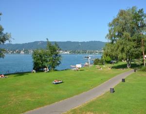 Zurich City Lakeside