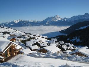 Chalet LYS Apartment 14 Rue Sigma - Champoussin