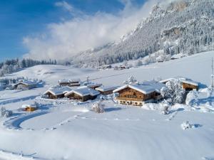 Narzenhof Familien & Luxus Apartments - St Johann in Tirol