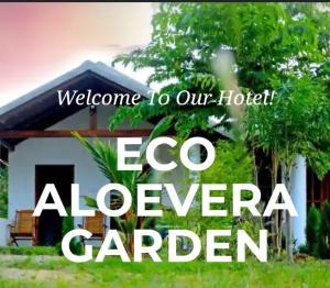 Ecoaloeveragarden - Mirahala