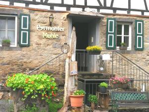 Pyrmonter Mühle - Forst
