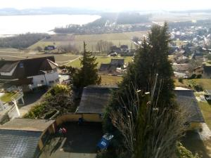 Swiss Borzoi House, Bed & Breakfast  Bellerive - big - 6