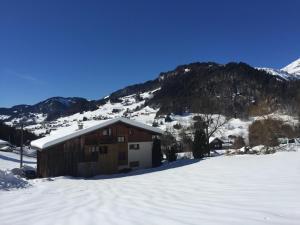 Appartement Plein Sud à 1,5km des pistes de ski - Apartment - Flumet