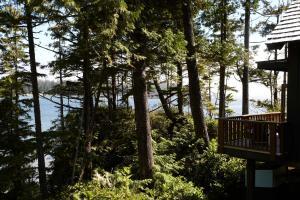 Middle Beach Lodge, Chaty v prírode  Tofino - big - 42
