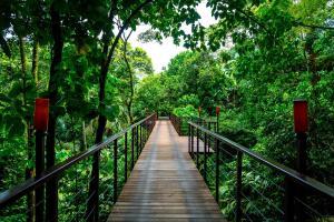 Nayara Resort, Spa and Gardens (28 of 28)