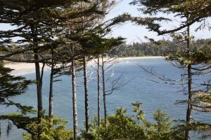 Middle Beach Lodge, Chaty v prírode  Tofino - big - 73