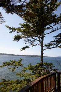 Middle Beach Lodge, Chaty v prírode  Tofino - big - 64