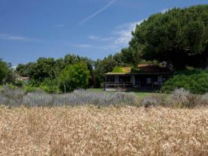 Capalbio Scalo Villa Sleeps 8 WiFi - AbcAlberghi.com