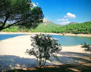 Lakeside apartment - 1 hour from Madrid