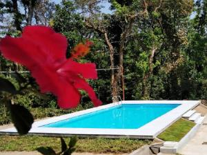 Auberges de jeunesse - Kalyan Cool villa - Chikmagalur