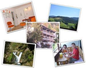 Ferienwohnung Christa - Bad Peterstal