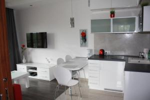 Apartament Sofii w Centrum