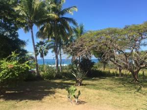 Casa Nativa, Playa Negra Venado