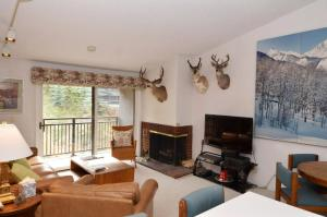 700 Monarch Unit 301 - Hotel - Aspen