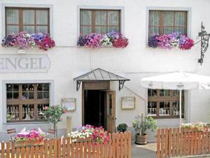 Hotel Restaurant Engel - Ebringen