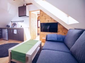Chatka na stoku - Apartment - Szczyrk