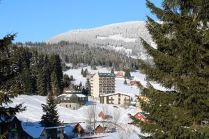 Albergues - Apartmany Firn