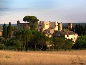 Location gîte, chambres d'hotes Monte Arena dans le département Gard 30