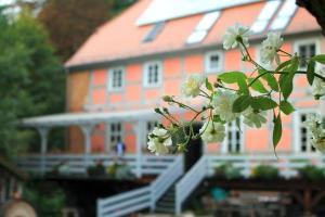 Holiday home in Nordwestuckermark 34328 - Gollmitz