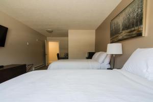 obrázek - Northwood Plaza Hotel