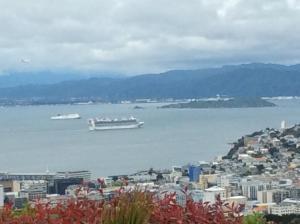 obrázek - 180° View of Wellington City