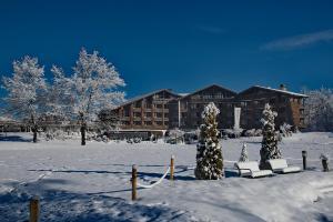 Ski Resorts in Bavarian Swabia