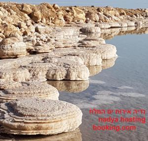 Nadia Hosting Dead Sea, Lodges - Neve Zohar