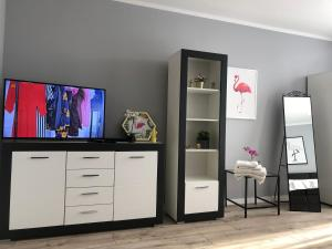 Apartament DeLuxe Flaming Centrum PKPPKS