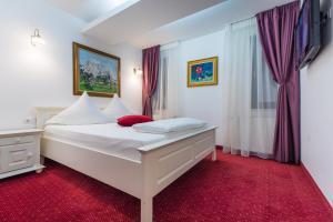 Hotel Casa David, Hotely  Craiova - big - 4