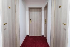 Hotel Casa David, Hotely  Craiova - big - 36