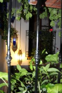 Mi Casa En Cordoba, Apartmány  Córdoba - big - 62