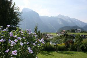 Haus Bergheimat - Hotel - Abtenau