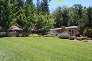 Mother Lode Motel, Motel  Placerville - big - 54