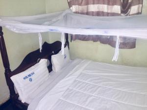 . Hotel Free Zone