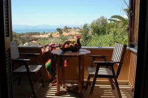 Rastoni Hotel Aegina Aegina Greece