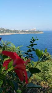 Paradiso Solchiaro - AbcAlberghi.com