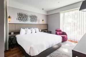 Hotel Bonaventure (25 of 73)