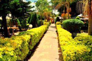 __{offers.Best_flights}__ Marriot Hotel Eldoret