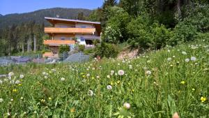 Holiday Home Zillertal - Haus Gigl - Hotel - Bruck am Ziller