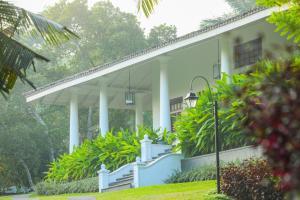 Thompson Manor (A Luxury Villa in Galle), Vily  Gálla - big - 28