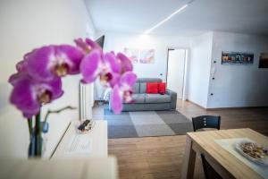 Appartamento Alba