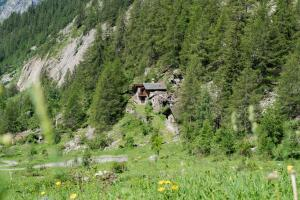 Baita Montagna Courmayeur Val Sapin - Hotel - Courmayeur
