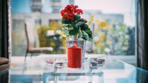 obrázek - Luxury Rose Suites