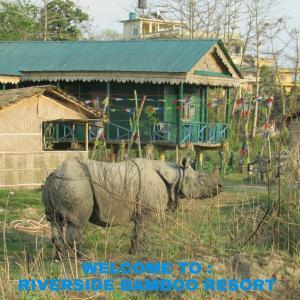 Riverside Bamboo Resort