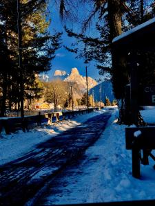 wonder mountain appartment - Apartment - Bellamonte