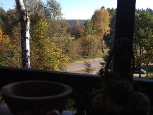Birchy Hills